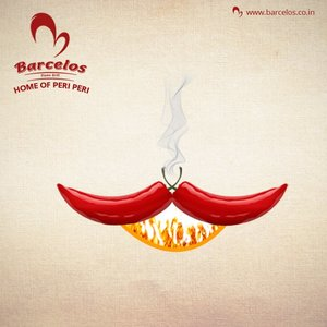 Barcelos eyes quicker expansion in India